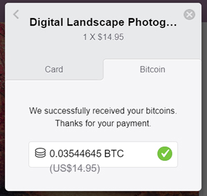 successful-payment-bitcoin-stripe-payments-addon