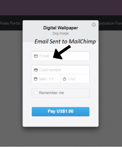 email-for-mailchimp-stripe-payments